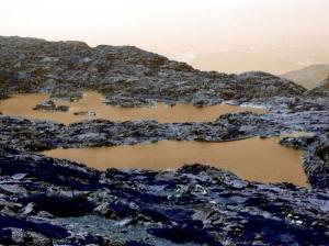 Paisagem Natural/águas turvas