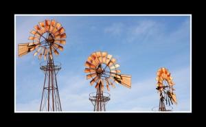 Gentes e Locais/Ao sabor dos ventos