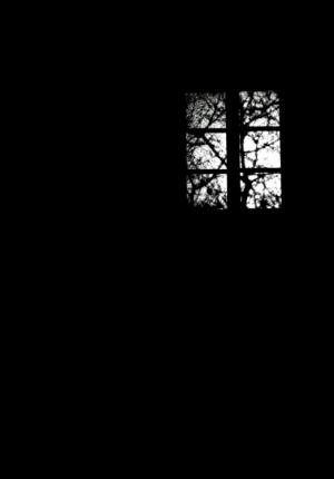 /vejo uma luz...
