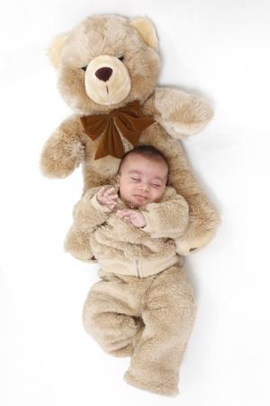 Retratos/Baby Bear