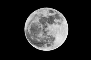 Outros/Big Moon