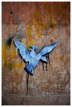 Outros/Pássaro azul...