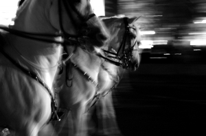 /HorsePower