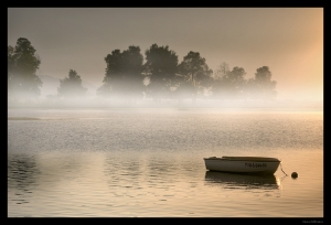 /Misty morning in the lake