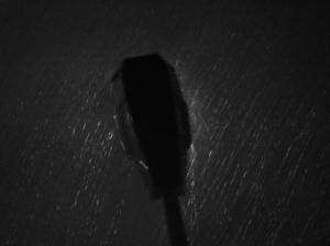 Outros/À Chuva, de noite