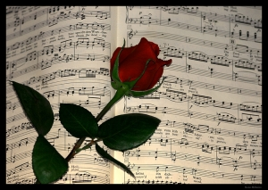 /Rose and the Music...