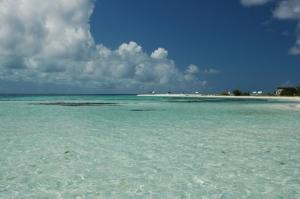 /Caribe