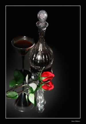 /Still life with a rose