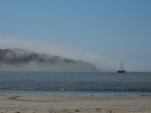 Paisagem Natural/Num dia de nevoeiro ...