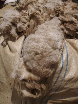 Outros/a lã
