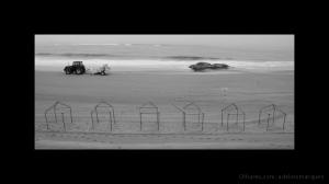 Gentes e Locais/I - MOL - 2010