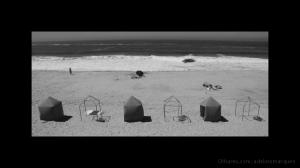 Gentes e Locais/III - MOL - 2010