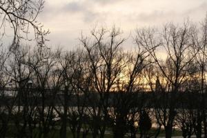 Paisagem Natural/A manhã do último dia do ano...