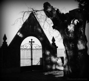 Paisagem Urbana/Graveyard