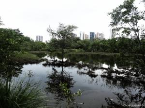 Paisagem Natural/Preserve a natureza.