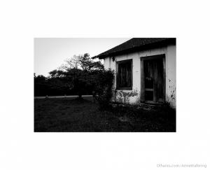 Outros/I segni dell'abbandono