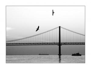 /A Ponte ...