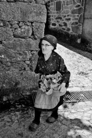 Gentes e Locais/Ir lavar as alfaces