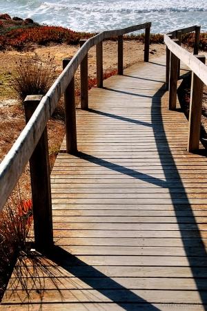 Paisagem Natural/O Caminho do Meio