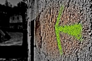 /the green arrow ....