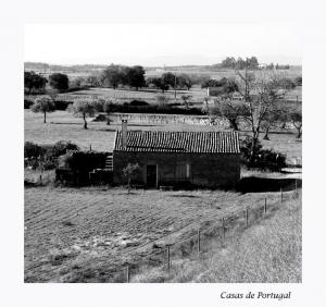 Paisagem Urbana/Casas de Portugal II