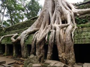 Outros/Cambodia