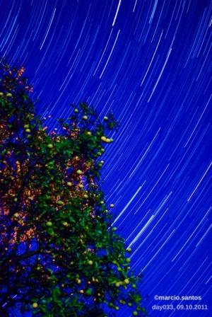 Outros/o caminho das estrelas