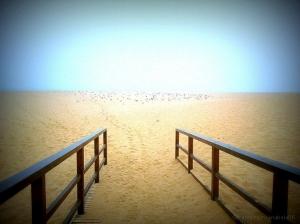 Paisagem Natural/Vamos á praia?
