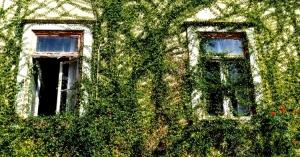Paisagem Urbana/Da janela do meu quarto, via o mundo