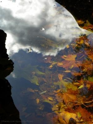 """Abstrato/""""Natural Mirror"""""""