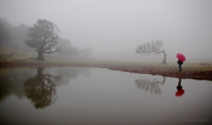 Paisagem Natural/Mistic moments