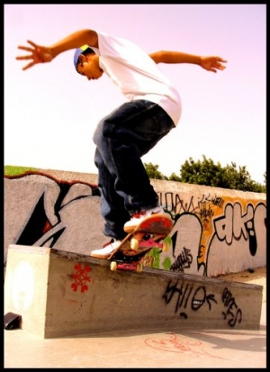 /nollie 2 front nose