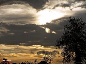 Paisagem Natural/Nebulosidade dos céus