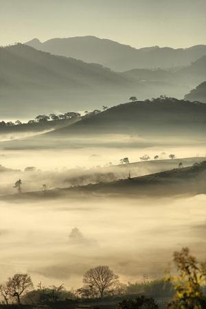 Paisagem Natural/Neblina
