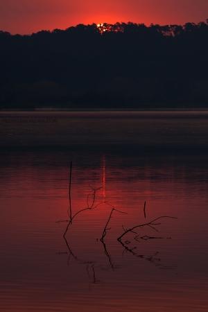 Paisagem Natural/First light