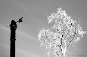 Paisagem Urbana/O cabeça de vento e a esgadelhada