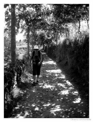 Outros/Caminho de Santiago
