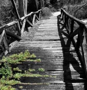 Outros/Velha Ponte