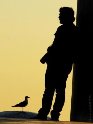 /O fotógrafo II