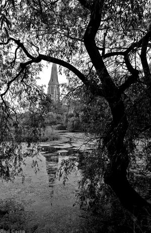 Gentes e Locais/Árvore Gótica