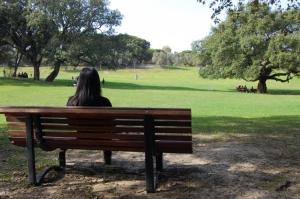 Paisagem Natural/Parque da Paz