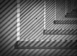 """Abstrato/""""Zebrado"""""""