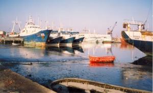 Outros/Em familia_Porto de Pesca