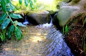 Outros/Água Correndo