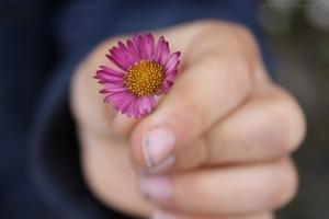 /flor na mao da criança