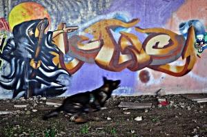 Paisagem Urbana/GRAFFITI n.º 154: AGARRA-O!