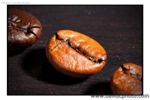 Macro/Grão de Café