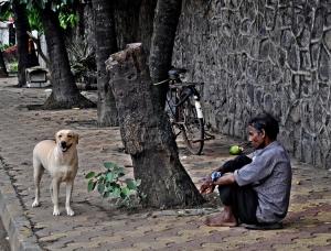 /O Homem Cansado De Existir O Cão Que Sabia Sorrir