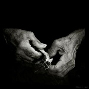 /Mãos de quem vive da terra