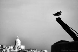 Paisagem Urbana/Céu de Lisboa